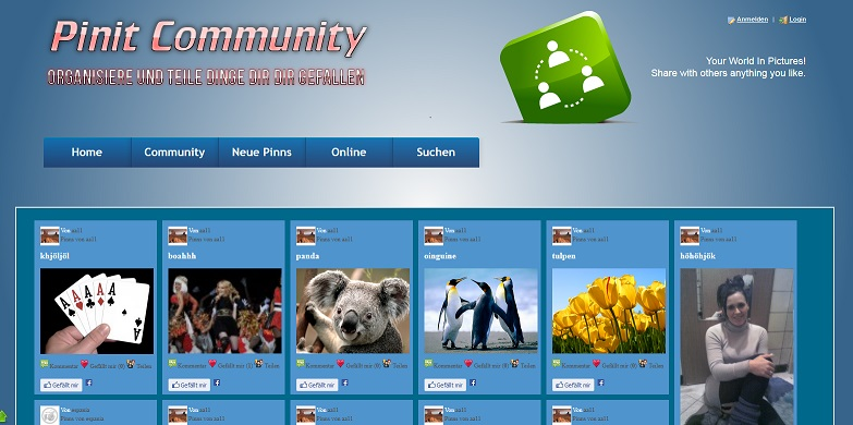 PHP Script Pinit Community System
